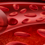 Types Of Blood Diseases