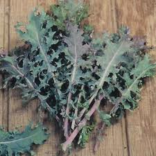 Types Of Kale