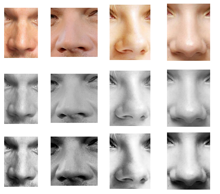 human noses types