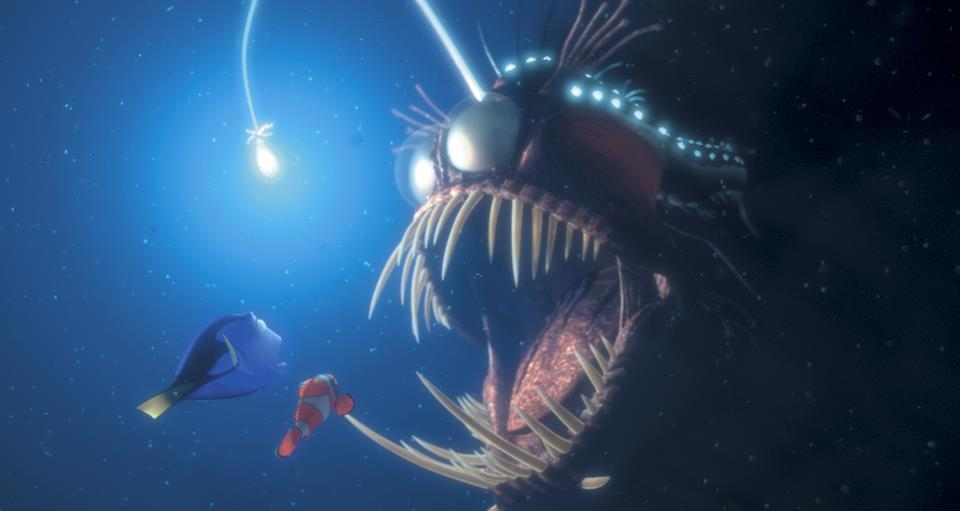 Types Of Fish In Finding Nemo