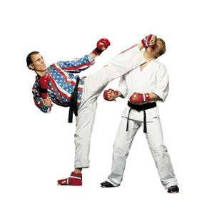 Types Of Martial Art Kicks
