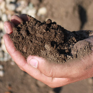 Types Of Soil Sand